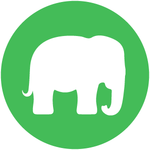 Elephant web design and development package