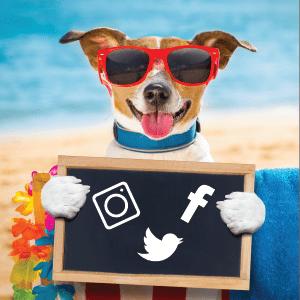 Summer social Cariad