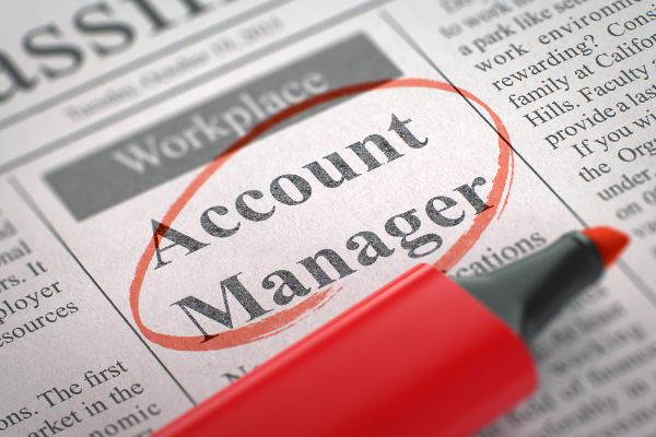 SEO/PPC Account Manager